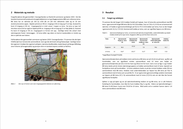 Rapport page 3
