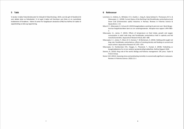 Rapport page 5